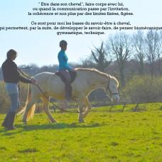 harmonie cavalier cheval