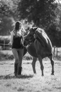 Quand le cheval propose